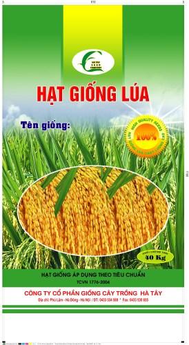 Bao Bì Hạt Giống lúa Hà Tây 40kg