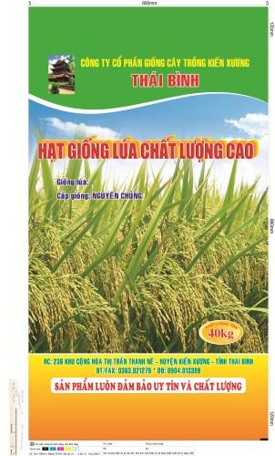 Bao Bì Giống Lúa Thái Bình 40Kg