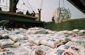 Bao bì cho hàng xuất khẩu