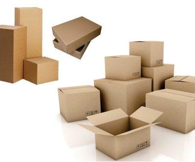 thùng carton tt12