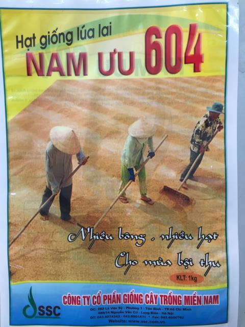 Túi Giống Lúa Lai Nam Ưu 604 (1kg)