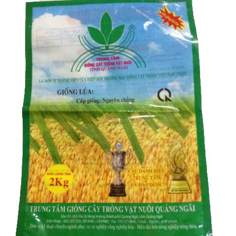Túi Giống Lúa 1kg nguyên chủng