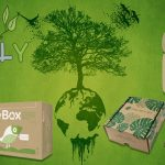Bao bì thân thiện với môi trường: nhựa hay giấy?